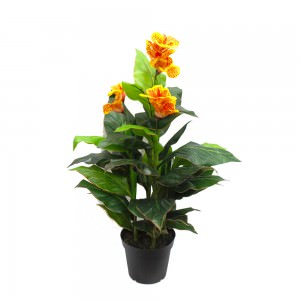 Shrubs & Artificial flowering plants